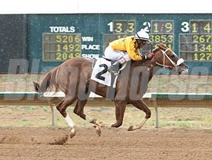 Fast Puff wins the 2013 Silver Cup Futurity Filly Division.