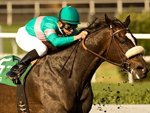 Zenyatta Gallops; Set for Oct. 30 Work