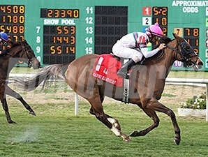 Class Included wins the 2014 Bayou Handicap.