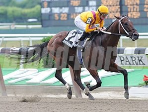 Dominus wins the 2011 Dwyer.