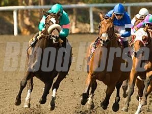 Santa Teresita, at right, battles with Zenyatta in the 2008 Milady