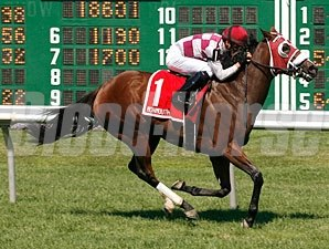 Tiger Cat Lilly wins the 2011 Crank It Up Stakes.