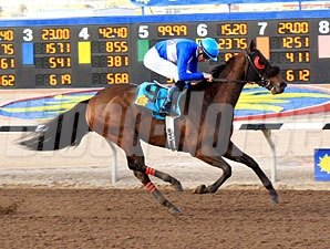 Our Choice wins the 2012 Mt. Cristo Rey.