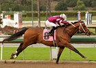 Tapizar Will Be Hard to Catch in Strub Stakes