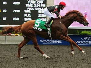 City Wolf Puts Win Streak On Line in Autumn