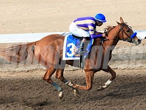 Princess Arabella in the Sunland Park Oaks.