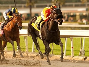 Teddy's Promise Delivers Santa Monica Victory