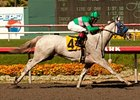 Zazu Takes Rail to Brave Hollywood Oaks Win