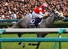 Gold Ship's Hanshin Win Secures BC Turf Slot