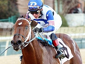 Tanzanite Cat wins the Smarty Jones Stakes.