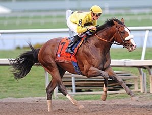 Matz Feels Union Rags Has Point to Prove
