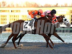 Inhisglory wins the 2011 Turfway Park Prevue.