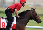 Singapore Stakes Attracts California Memory