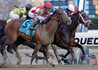 Overanalyze Wins Remsen Headbob