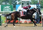 Tizway Cruises in Met Mile
