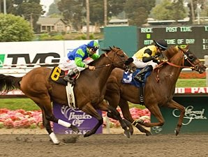 Awesome Gem Glitters in Big Gold Cup Finish