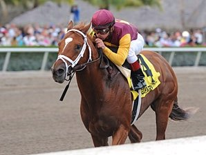 'Dancer Takes GP Cap as Fort Larned Stumbles