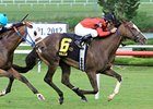 Pin Oak Valley View to Be Run in Divisions