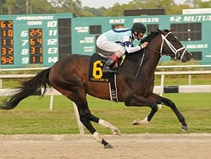 Verrazano Stays Unbeaten in Tampa Bay Derby
