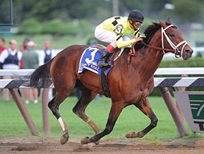 Quality Road, Other Pletcher Horses Work