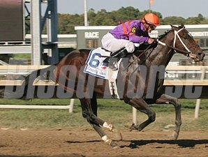 Thiskyhasnolimit wins the 2010 Smarty Jones Stakes.