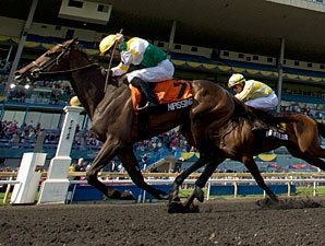 Nipissing Earns Distinction in Woodbine Oaks