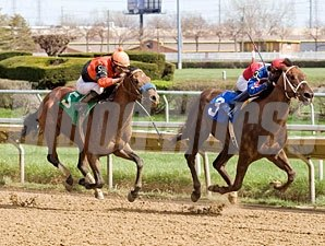 Luck With a Kiss wins the 2011 Land of Lincoln Stakes.