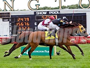 Memorial Maniac wins the 2010 Stars and Stripes.