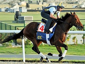 Gio Ponti All Set For Dubai World Cup