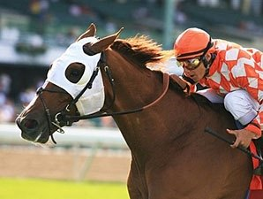 Grade I Winner Presious Passion Retired