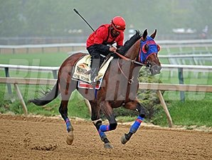 Social Inclusion - Pimlico, May 15, 2014