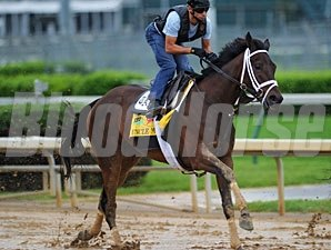 Uncle Mo works in the slop at Churchill Downs.