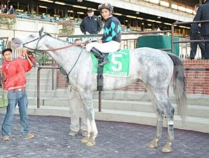 Stud Muffin wins the 2008 Empire Classic.