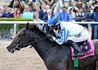 Upstart Earns Bullet in Palm Meadows Breeze