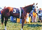 Events to Commemorate Secretariat's Crown