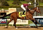 Tapizar Serves Notice in Sham Romp