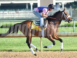 Optimizer - Churchill Downs 5/2/2012