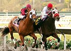Big Macher Shows Star Quality in Cary Grant