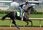 Mylute Confirmed for Preakness Stakes