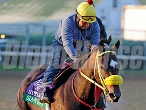 Giant Ryan at Churchill Downs on October 29, 2011.