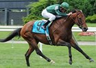 Gio Ponti Expected For Next Week's Man o' War
