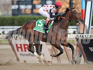 To Honor and Serve wins the 2010 Remsen.
