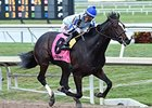 Upstart, Frosted, Imperia All Work in Florida