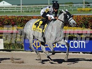 Ullapool wins the 2014 Florida Sunshine Millions Filly and Mare Sprint.