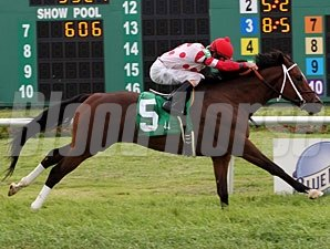 Kissimmee Kyle wins the 2011 Bayou St. John Stakes.