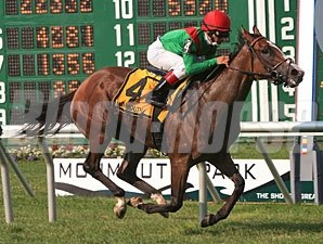 Summer Soiree wins the 2011 Boiling Springs.