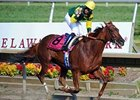 Hystericalady Romps to Delaware 'Cap Win