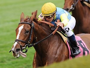 Dayatthespa Takes 'Em All the Way in QEII Cup