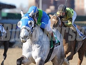 Temporary Saint wins the 2008 Excelsior.