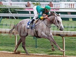 Exfactor - Maiden Win, 06/09/11